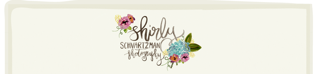 Brooklyn NYC Newborn and Child Photographer | Shirly Schvartzman Photography | Newborns and Kids Photography logo